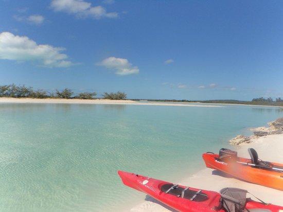 Starfish The Exuma Adventure Center: kayaking