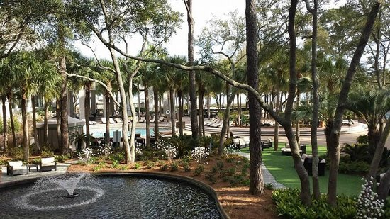 The Westin Hilton Head Island Resort & Spa : Nicely landscaped pool area