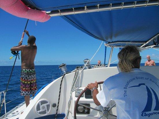 Elegance Catamaran Cruises: View from the stern