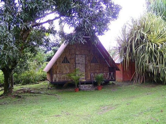 Los Mineros Guesthouse: Meine Bambushütte