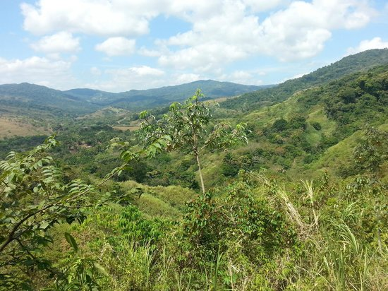 Jungle Adventures by Kalu Yala: View from the Valley
