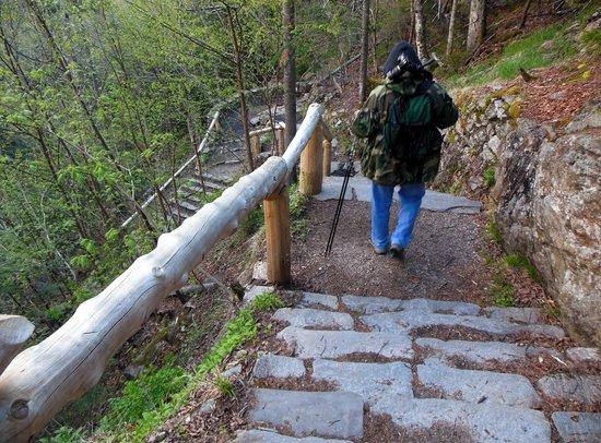 Glen Ellis Falls: Stairs to Ellis River Falls