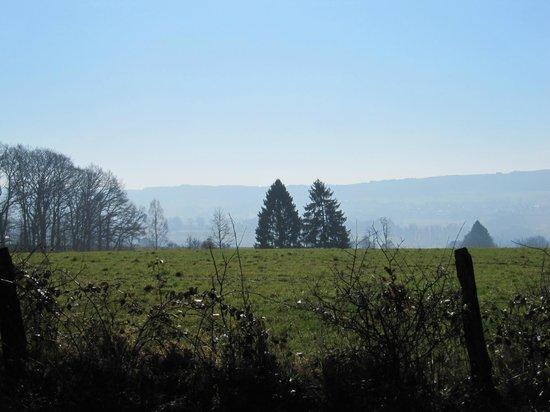 Sunparks Ardennen : Ballade chasse aux trésors