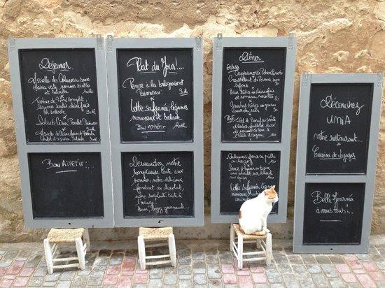 Umia : Une façon originale de nous présenter les menus
