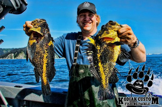 Saltwater Excursions - Fishing Charters and Heli Tours: CHINA ROCKFISH ON SALTWATER EXCURSIONS
