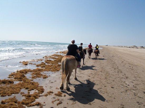 South Padre Island Adventure Park: Along the beach