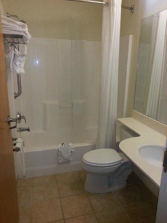 Microtel Inn & Suites by Wyndham Gulf Shores: Clean bathroom