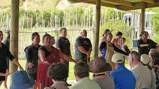 Waimarama Maori Tours: Meeting the Maori family