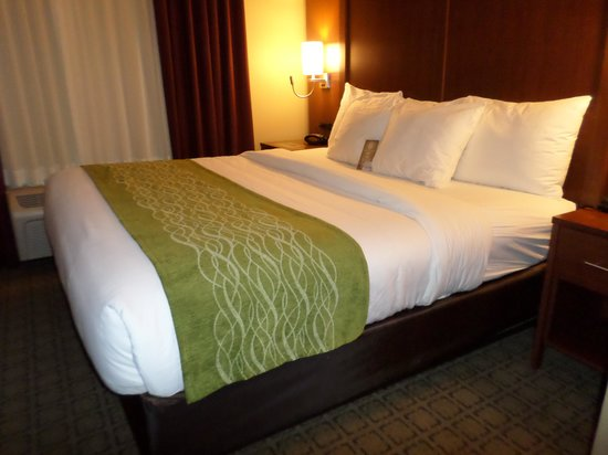 Comfort Inn Bedding Comfort Suites Lodging Room Bed Picture Of Comfort