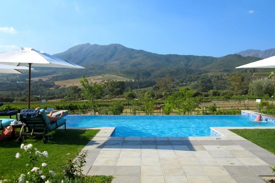 Dunstone Country House: Great pool with view