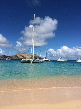 Scoobidoo : Tintamarre Island