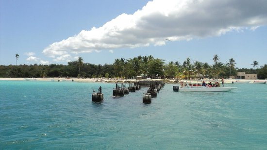 Dressel Divers : Isla Saona