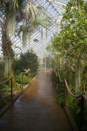 Buffalo and Erie County Botanical Gardens: View in Botanical Garden