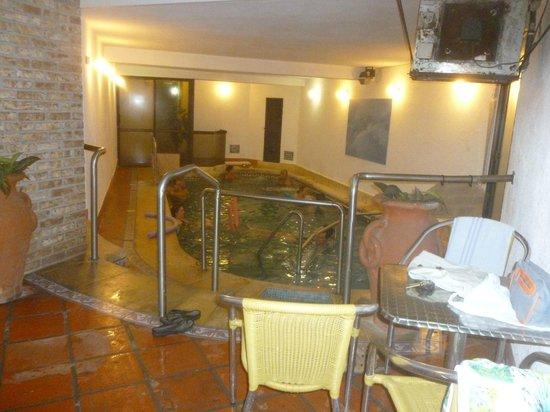 Hotel Colón: Piscina interior