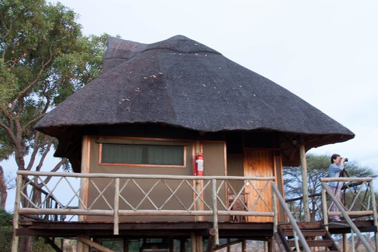 Water Lily Lodge: Bush Loge Accommodations