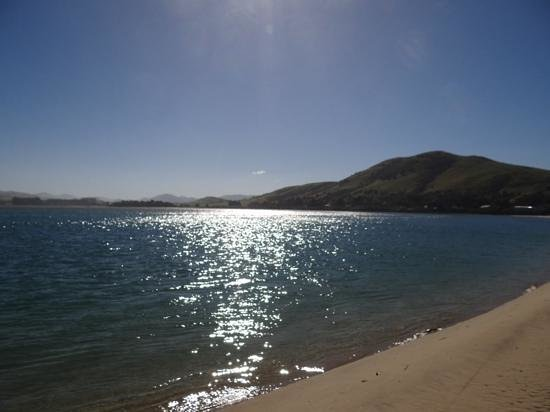 Pounawea Grove Motels - The Catlins: Beautiful walks!