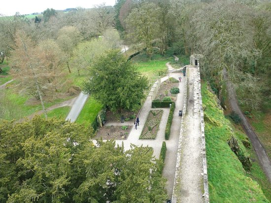 Irish Day Tours : View from Blarney Castle tower