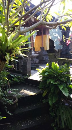 Nirwa Ubud Homestay: Nirwa grounds (2nd level)