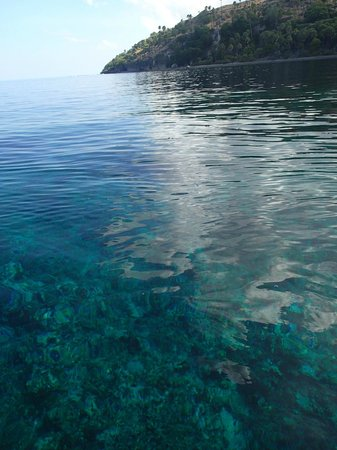 Compass Charters & Ocean Adventures: Water was so clear!