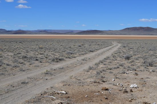Lunar Crater Back Country Byway: Dry lake bed.