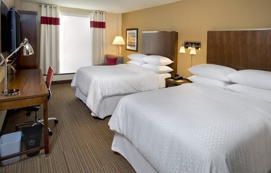 Four Points by Sheraton Charleston : Standard Double Room