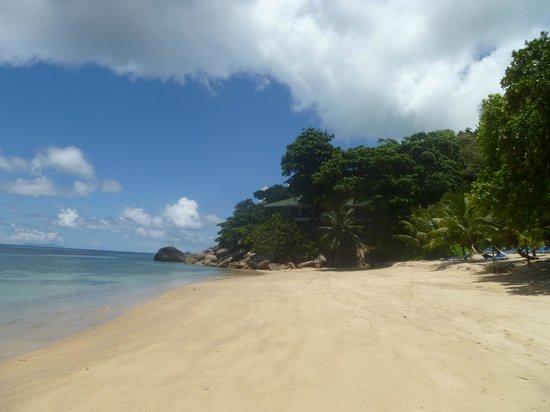 Coco de Mer - Black Parrot Suites : Beach