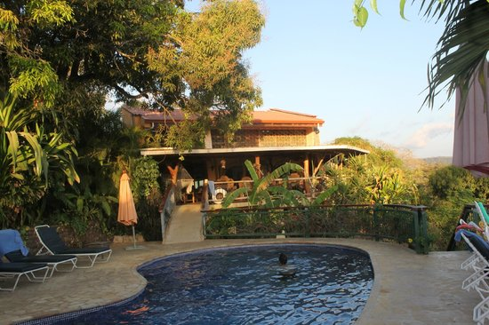Villa Mango: Another view from the pool deck