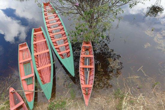 Tariri Amazon Lodge : Barcos do lodge para os passeios