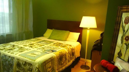 موبد سيتي مايو بيد آند وييلز: 部屋は広く小ぎれい。ただ、ふと床を見ると、小さな虫がいるときがある。