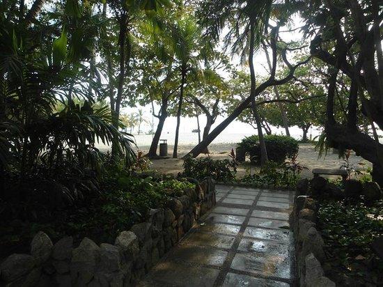 Irotama Resort : vista desde la puerta de la habitacion
