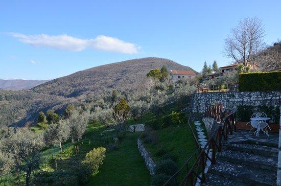 Agriturismo Colle Cesoni : Vista dall'appartamento