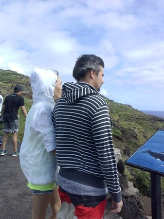 Makapuu Lighthouse Trail: Viewing the placard about the whale sanctuary