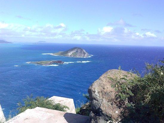 Makapuu Lighthouse Trail: Gorgeous view