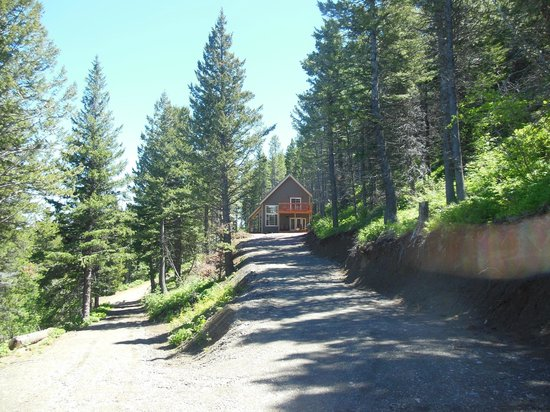 "Dancing Bears Inn: Cabin House Rental - ""Baby Bear"""