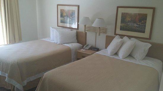 Days Inn Hilton Head : Standard Double Room