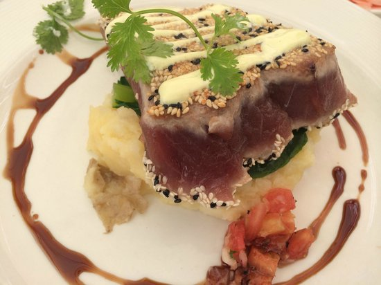 Beluga: Tuna