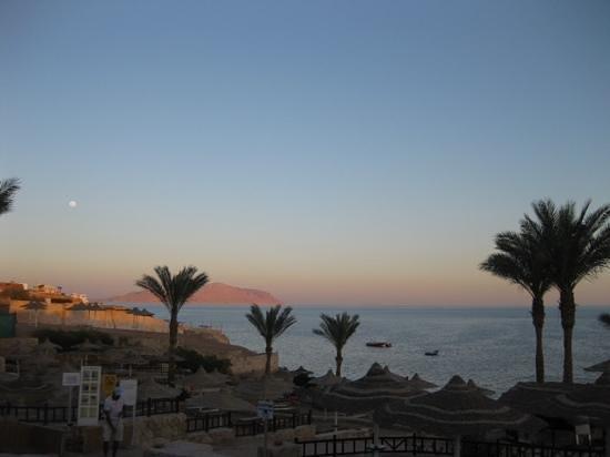Hilton Sharks Bay Resort: sea view