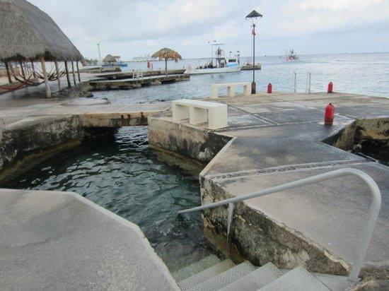 Scuba Club Cozumel: Entry point for shore dives