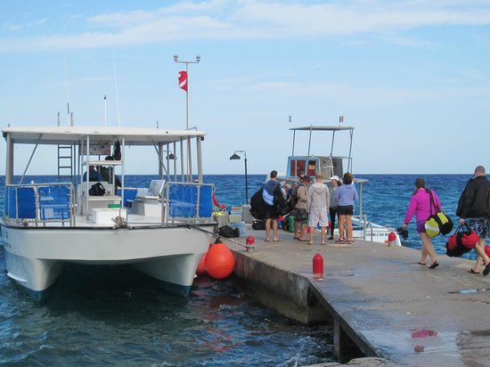 Scuba Club Cozumel : All dive boats load at this pier every morning