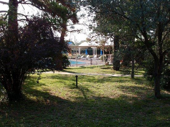 L'Hostellerie des Pins : Vue de la piscine depuis le jardin