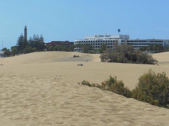 Duinen van Maspalomas - Picture of Playa de Maspalomas, Maspalomas - TripAdvisor