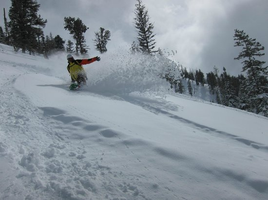 Utah Mountain Resort Tours : Powder Mountain.