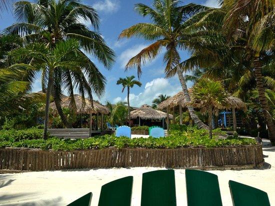 White Sands Cove Resort : beautiful grounds