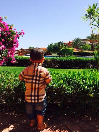 Sharm Grand Plaza: My son in the garden