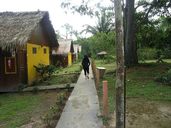 Amazon Turtle Lodge : Beautiful, quiet grounds