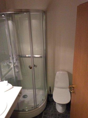 Hotel Geysir: The bathroom... Toilet ran all night though..