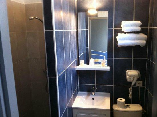 Les Palmiers : douche /wc chambre standard