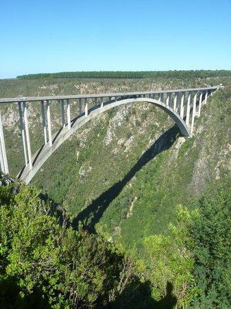 Face Adrenalin - Bloukrans Bungy: vista da ponte