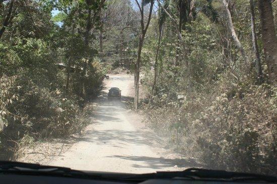 Gumbo Limbo Villas: steep drive
