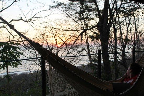 Gumbo Limbo Villas: sunset